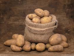 Kartoffelhotel