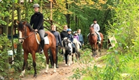 Familienreiten in der Lüneburger Heide