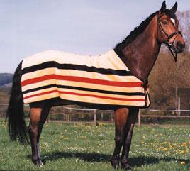 Pferde Artikel Zubehör Sättel Pferdezubehör