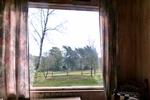 Ausblick des rustikalen Holzbungalow im Reiterdorf Lüneburger Heide für 4 Personen