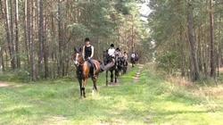 Reiturlaub in der Lüneburger Heide